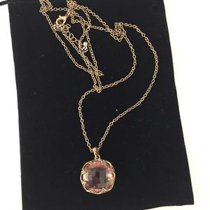 Anthropologie Pendant with Long Chain